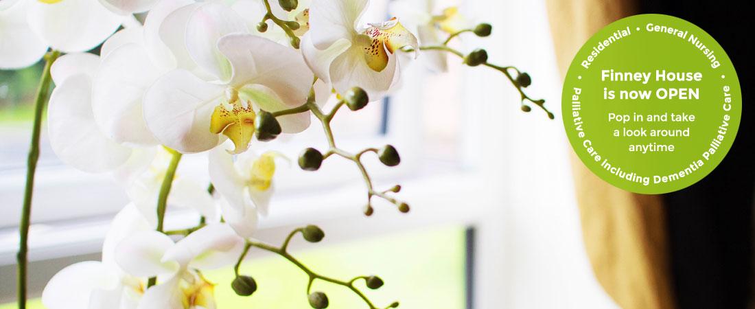 Finney-Contact-Flowers-open-3