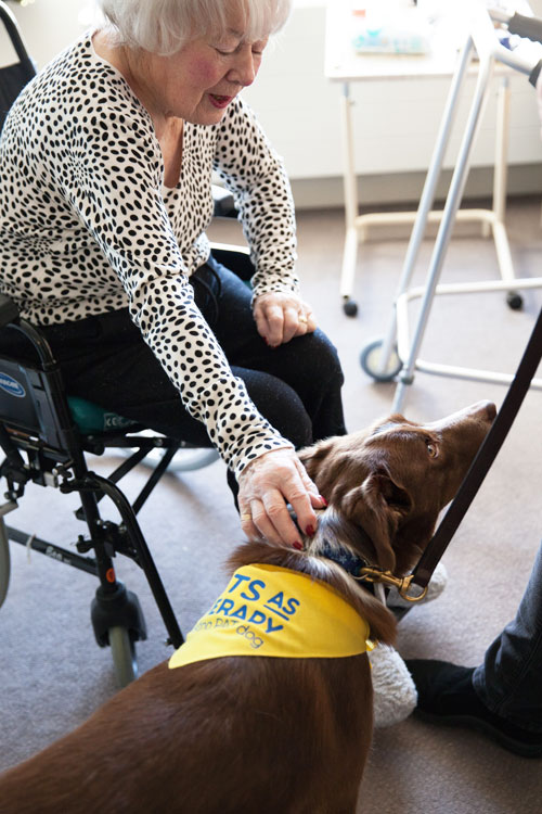 Pet Therapy visits Cherry Tree House
