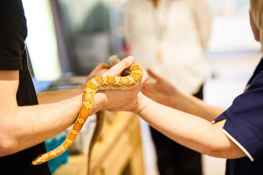 Zoolab visits Whittle Hall