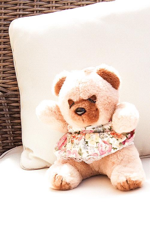 Teddy bears picnic at Gainsborough House